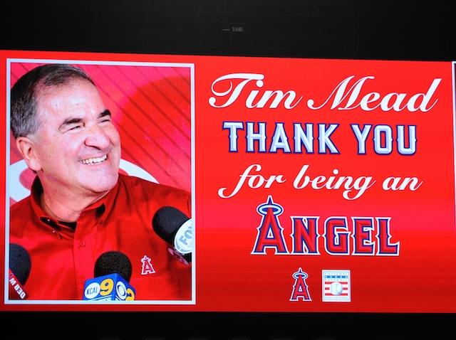 Tim Mead, Angels